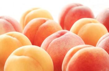 桃を通販で買うポイント